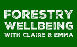 wellbeing mindfulness yoga walking forest day retreat